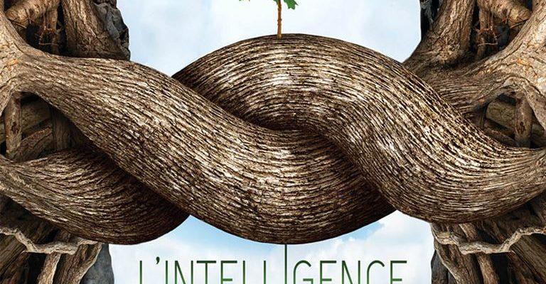 Ciné-débat «l'intelligence des arbres»
