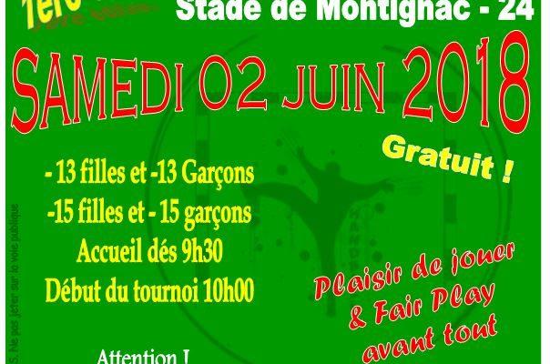 1er Tournoi de handball jeunes sur herbe : le cro-magnon