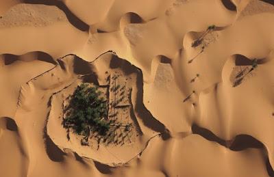 Soirée d'ouverture 11e festival du film documenterre «Désertification» de Yann Arthus-Bertrand et «Une oasis d'espoir»de Jean-Baptiste Pouchain