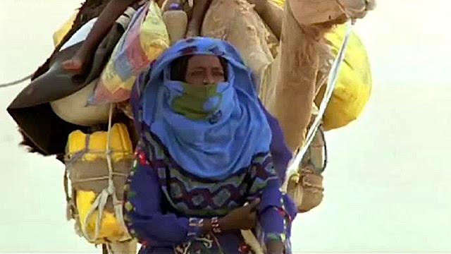 11e festival du film documenterre «Ciné-P'tit dèj : Sahara»