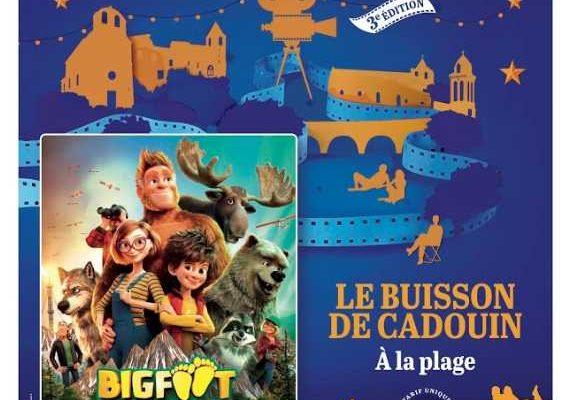 3ème édition festival soirs des toiles «big foot»